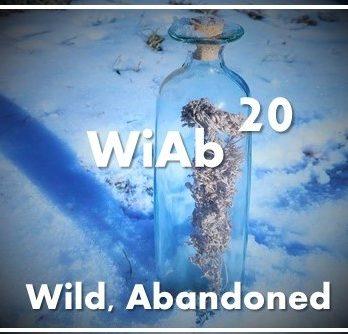 Wild, Abandoned:   2020